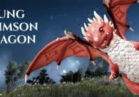 BDO – NEW BOSS GARMOTH | Young Crimson Dragon